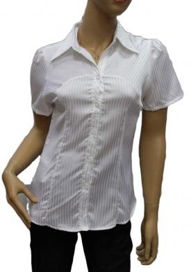 Koszula Damska Satynowa Kr. Rękaw OH-1001013